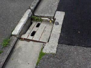 20090406masu_koujimae.jpg